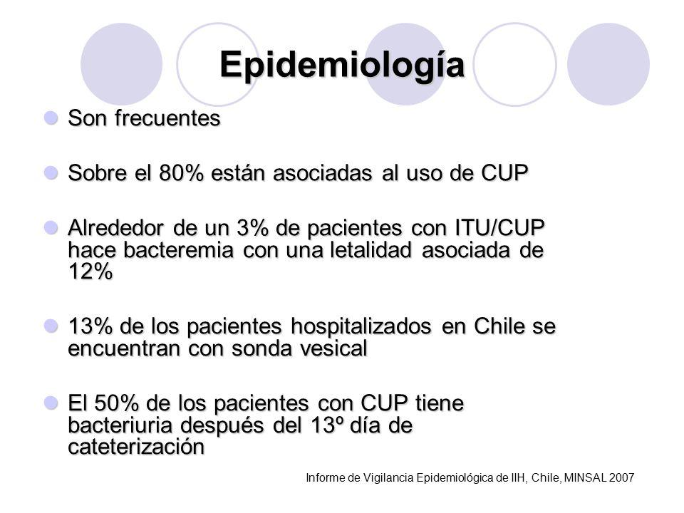 Epidemiología Son frecuentes Son frecuentes Sobre el 80% están asociadas al uso de CUP Sobre el 80% están asociadas al uso de CUP Alrededor de un 3% de pacientes con ITU/CUP hace bacteremia con una letalidad asociada de 12% Alrededor de un 3% de pacientes con ITU/CUP hace bacteremia con una letalidad asociada de 12% 13% de los pacientes hospitalizados en Chile se encuentran con sonda vesical 13% de los pacientes hospitalizados en Chile se encuentran con sonda vesical El 50% de los pacientes con CUP tiene bacteriuria después del 13º día de cateterización El 50% de los pacientes con CUP tiene bacteriuria después del 13º día de cateterización Informe de Vigilancia Epidemiológica de IIH, Chile, MINSAL 2007