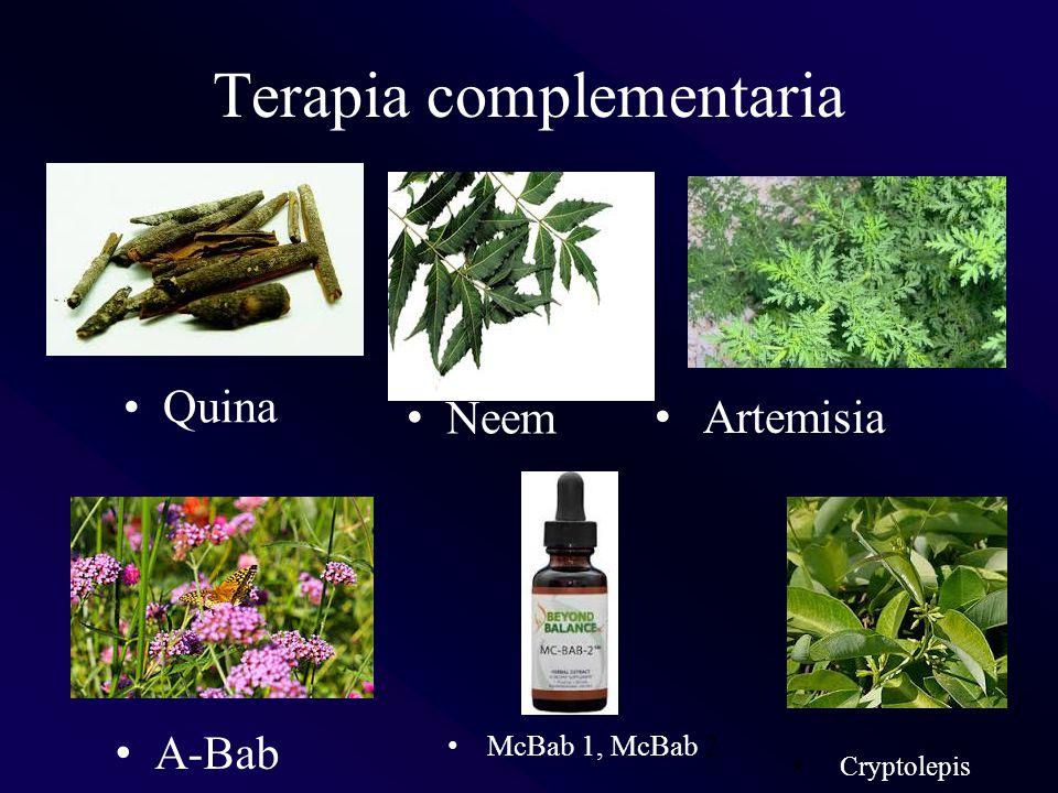 Terapia complementaria Quina Artemisia Cryptolepis A-Bab McBab 1, McBab 2 Neem