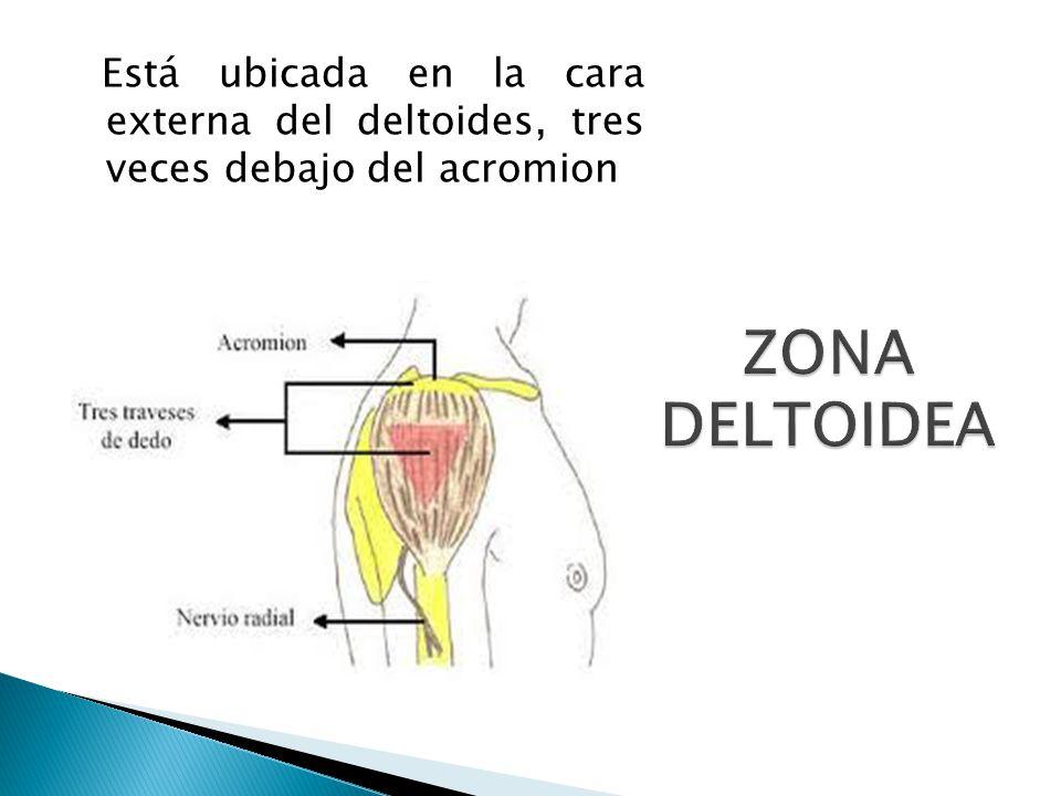 Está ubicada en la cara externa del deltoides, tres veces debajo del acromion