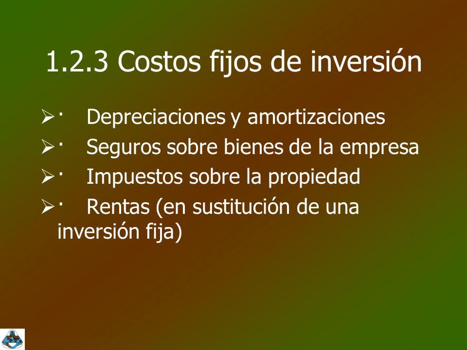 1.2.3 Costos fijos de inversión  ·Depreciaciones y amortizaciones  ·Seguros sobre bienes de la empresa  ·Impuestos sobre la propiedad  ·Rentas (en sustitución de una inversión fija)