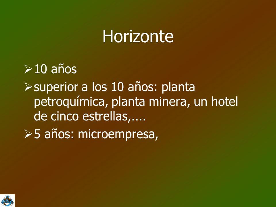 Horizonte  10 años  superior a los 10 años: planta petroquímica, planta minera, un hotel de cinco estrellas,....