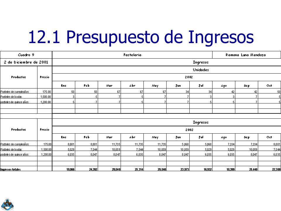 12.1 Presupuesto de Ingresos