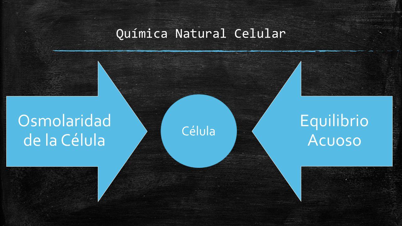 Osmolaridad de la Célula Agua: -Disolvente universal -Termostato fisiologico -Liquido mas abundante en el cuerpo.