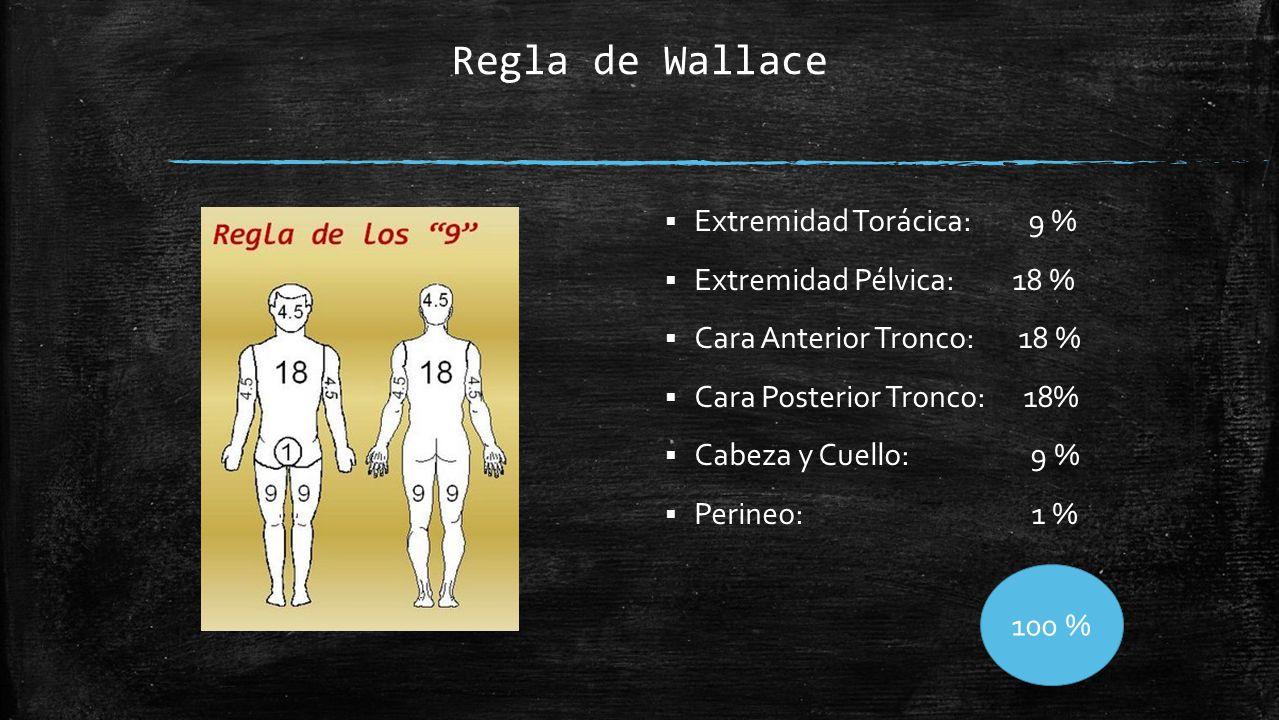 Regla de Wallace  Extremidad Torácica: 9 %  Extremidad Pélvica: 18 %  Cara Anterior Tronco: 18 %  Cara Posterior Tronco: 18%  Cabeza y Cuello: 9 %  Perineo: 1 % 100 %