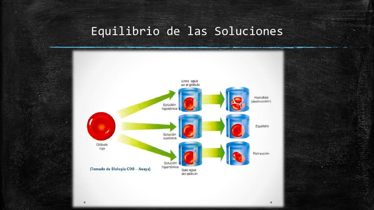 Conceptos Básicos  Osmosis: Difusión de líquidos a través de la membrana, fenómeno especialmente importante en el fenómeno de flujo en la membrana.