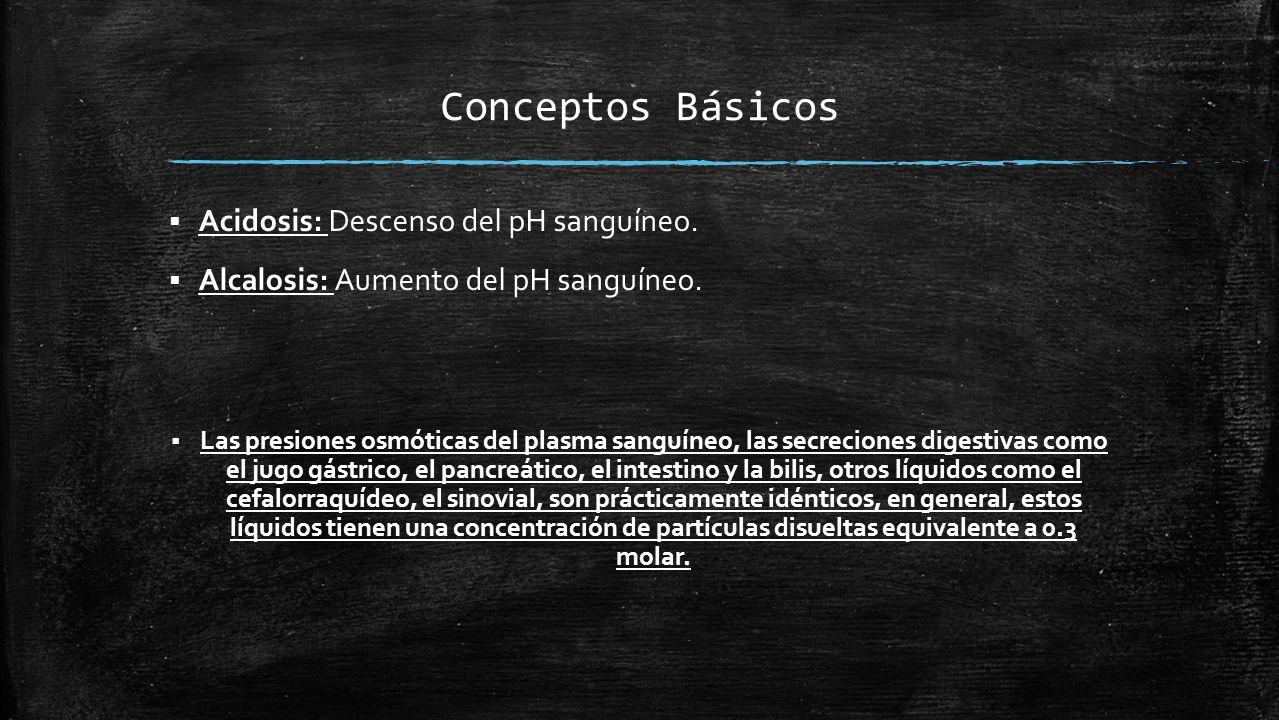 Conceptos Básicos  Acidosis: Descenso del pH sanguíneo.