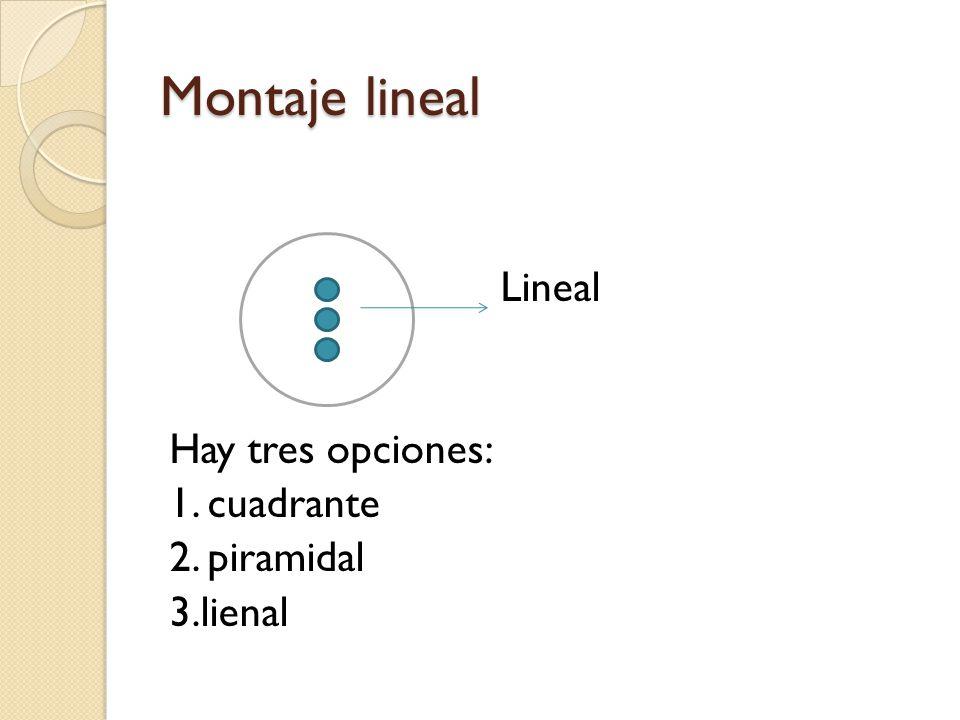 Montaje lineal Lineal Hay tres opciones: 1. cuadrante 2. piramidal 3.lienal