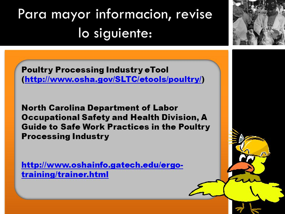 Para mayor informacion, revise lo siguiente: Poultry Processing Industry eTool (  North Carolina Department of Labor Occupational Safety and Health Division, A Guide to Safe Work Practices in the Poultry Processing Industry   training/trainer.html