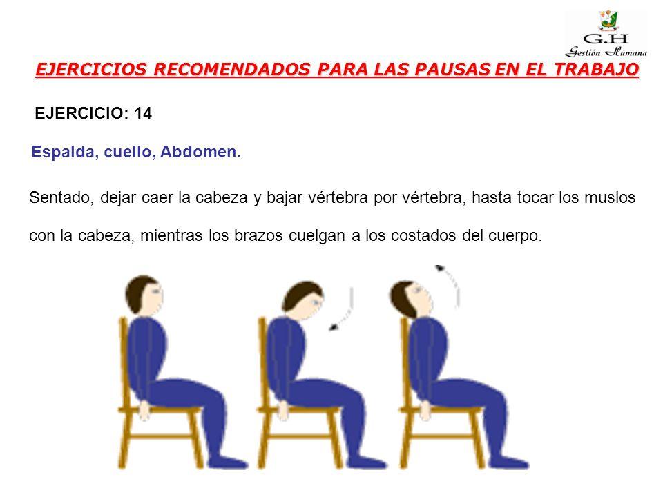 EJERCICIOS RECOMENDADOS PARA LAS PAUSAS EN EL TRABAJO Sentado, dejar caer la cabeza y bajar vértebra por vértebra, hasta tocar los muslos con la cabez