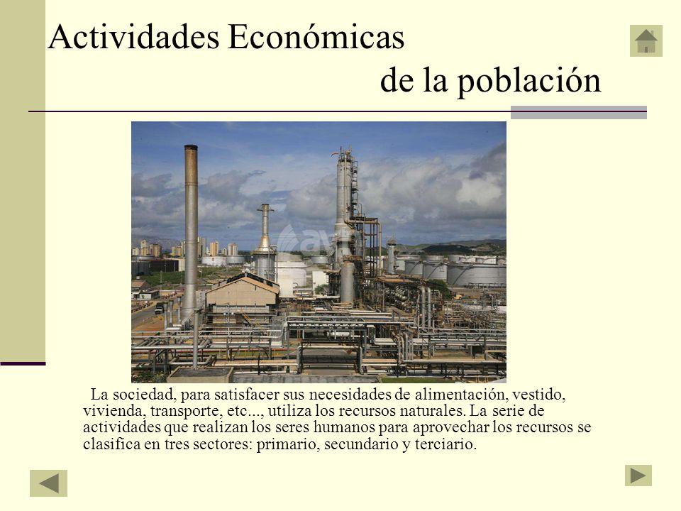 Actividades Económicas de la población La sociedad, para satisfacer sus necesidades de alimentación, vestido, vivienda, transporte, etc..., utiliza lo