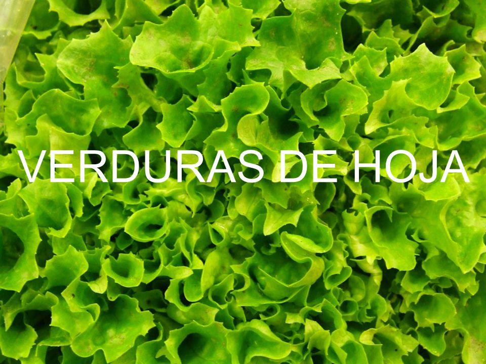 Se llama verduras de hoja a aquellas plantas que cuentan con hojas comestibles, y a veces también peciolos y brotes.