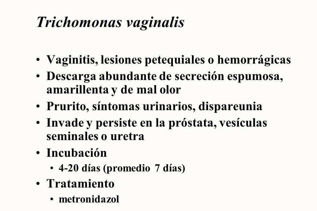 Herpes simplex, tipos 1,2 VHS 1 afecta predominantemente cara y cuello VHS 2 afecta predominantemente genitales Una vez que ha infectado permanece de por vida Incubación 3-7 días Tratamiento acyclovir, sólo controla los síntomas