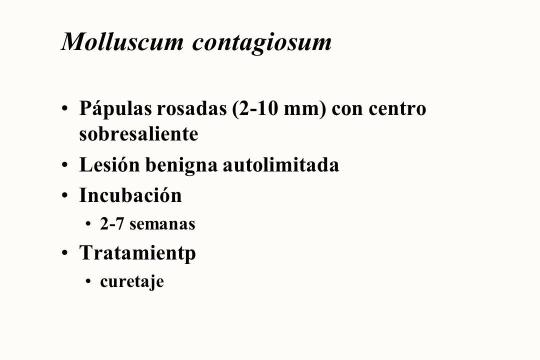 Neisseria gonorrhoeae Secreción uretral o vaginal Complicaciones PIP, infertilidad, embarazo ectópico estenosis uretral Incubación 2-5 días (9 o más días) Tratamiento antibióticos