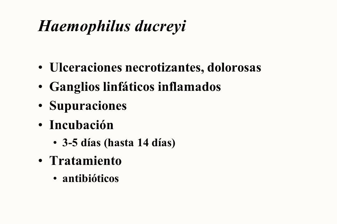 Treponema pallidum Síntomas pueden pasar desapercibidos Chancro a los 12-14 días No tratada sífilis 2ª---> sífilis 3ª Incubación 10 días---> 10 semanas (promedio 3 semanas) Tratamiento antibióticos