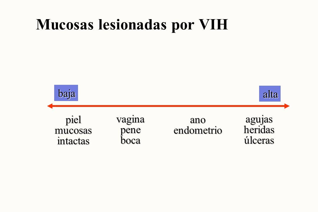 baja alta lágrimassudororinadeposiciones sangresemen salivauretra secreciónvaginalcuellouterino Secreciones infectadas por VIH