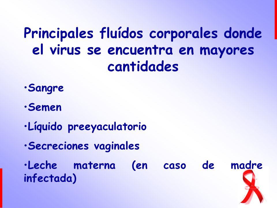 Principales fluídos corporales donde el virus se encuentra en mayores cantidades Sangre Semen Líquido preeyaculatorio Secreciones vaginales Leche mate