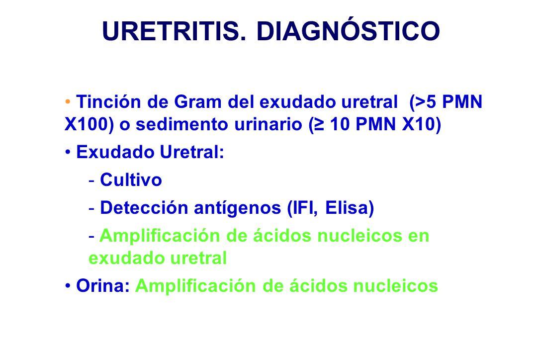 URETRITIS. DIAGNÓSTICO Tinción de Gram del exudado uretral (>5 PMN X100) o sedimento urinario (≥ 10 PMN X10) Exudado Uretral: - Cultivo - Detección an