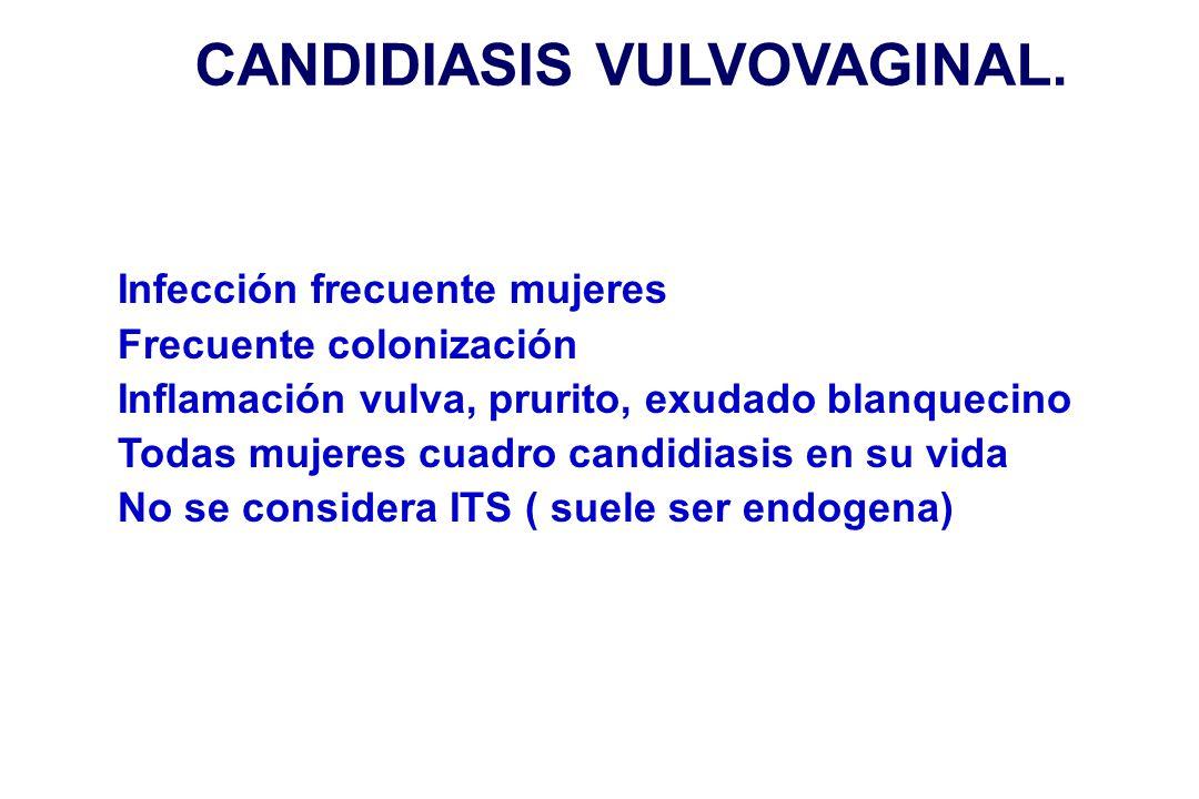 CANDIDIASIS VULVOVAGINAL. Infección frecuente mujeres Frecuente colonización Inflamación vulva, prurito, exudado blanquecino Todas mujeres cuadro cand