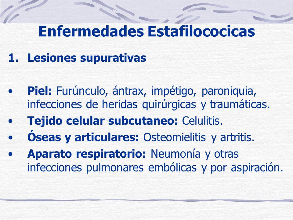 Enfermedades Estafilococicas 1.Lesiones supurativas Piel: Furúnculo, ántrax, impétigo, paroniquia, infecciones de heridas quirúrgicas y traumáticas.