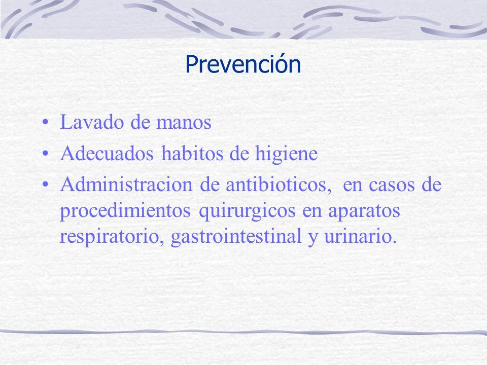 Prevención Lavado de manos Adecuados habitos de higiene Administracion de antibioticos, en casos de procedimientos quirurgicos en aparatos respiratorio, gastrointestinal y urinario.