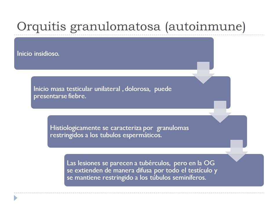 Orquitis granulomatosa (autoinmune) Inicio insidioso. Inicio masa testicular unilateral, dolorosa, puede presentarse fiebre. Histiologicamente se cara