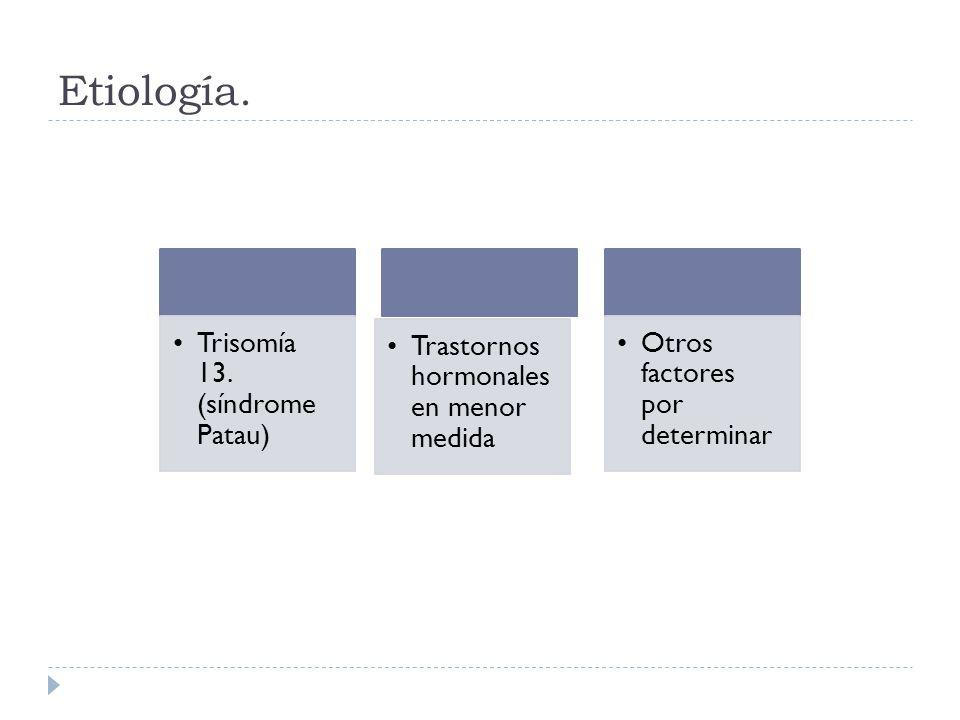 Etiología. Trisomía 13. (síndrome Patau) Trastornos hormonales en menor medida Otros factores por determinar