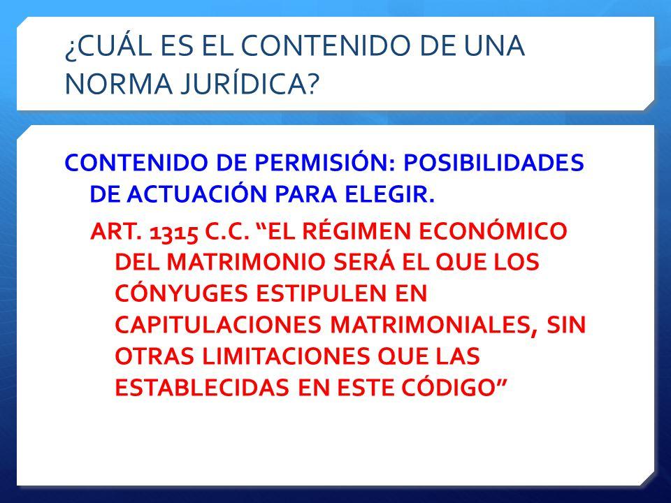 ¿CUÁL ES EL CONTENIDO DE UNA NORMA JURÍDICA.