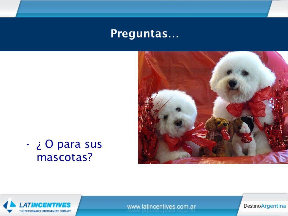 ¿ O para sus mascotas Preguntas…