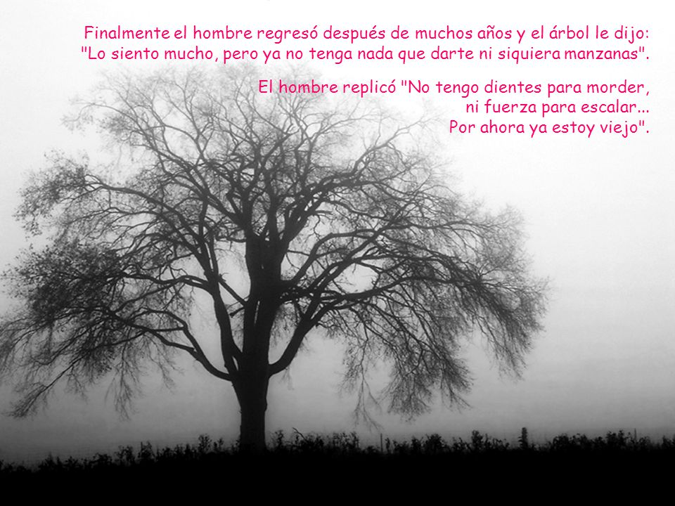 Entonces el árbol con las lágrimas brotándole le dijo, Ahora ya no puedo darte nada...