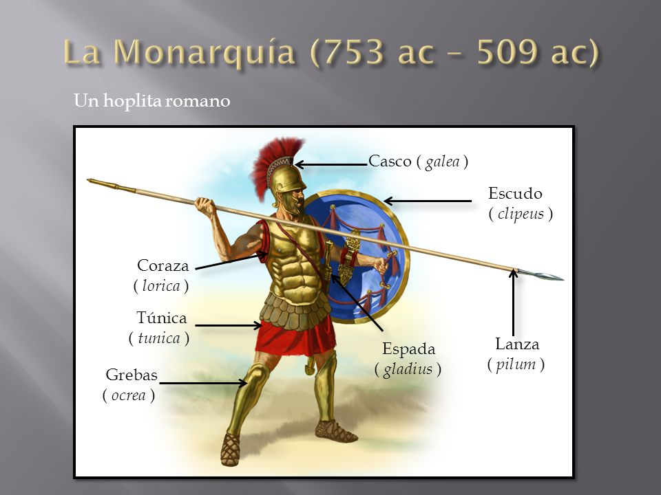 Casco ( galea ) Escudo ( clipeus ) Lanza ( pilum ) Espada ( gladius ) Coraza ( lorica ) Grebas ( ocrea ) Túnica ( tunica ) Un hoplita romano
