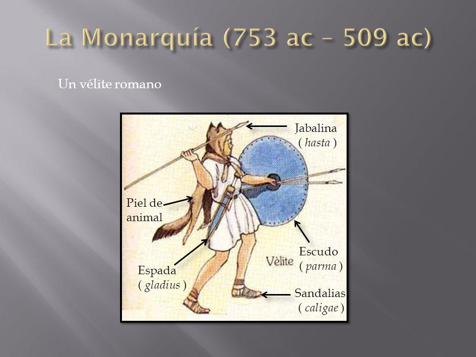 Un vélite romano Jabalina ( hasta ) Escudo ( parma ) Sandalias ( caligae ) Espada ( gladius ) Piel de animal