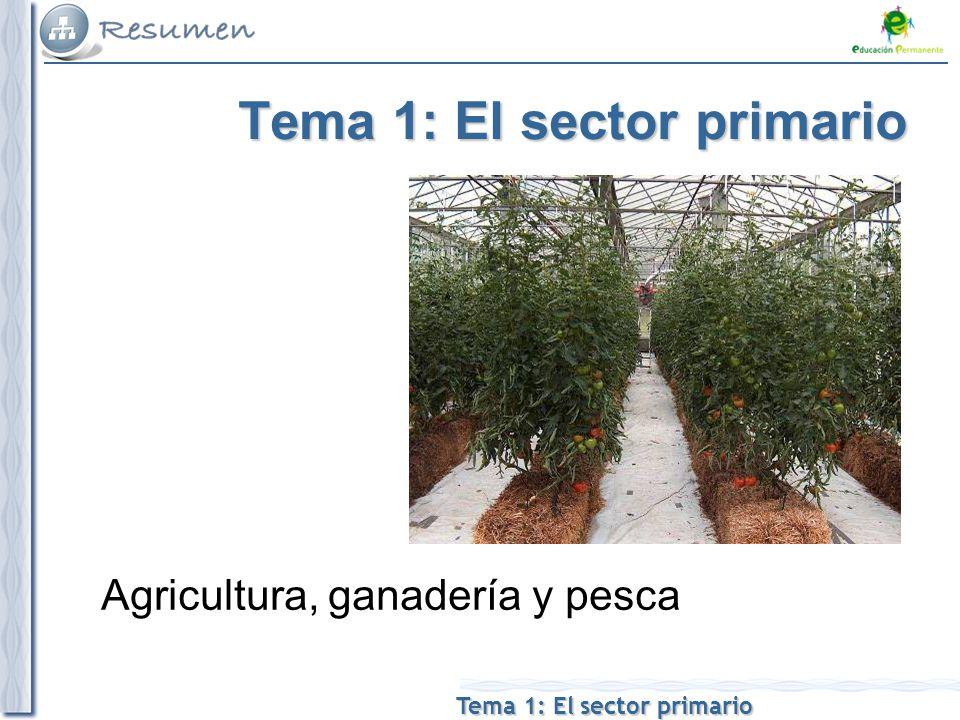 Tema 1: El sector primario Agricultura, ganadería y pesca