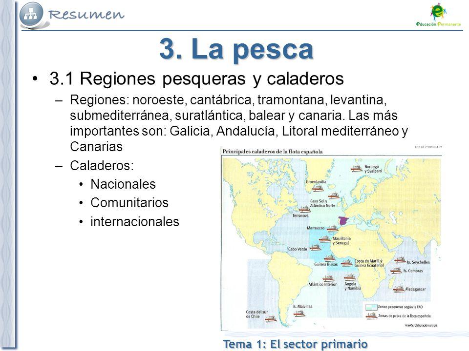 Tema 1: El sector primario 3.