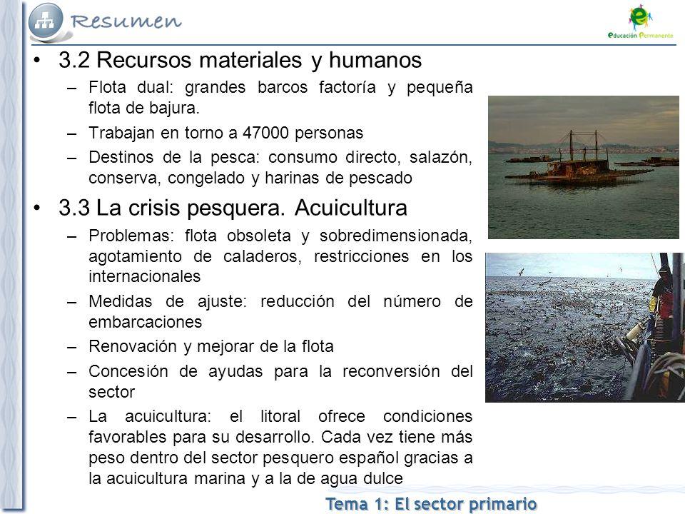 Tema 1: El sector primario 3.2 Recursos materiales y humanos –Flota dual: grandes barcos factoría y pequeña flota de bajura.