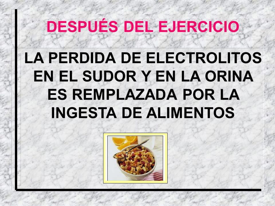 DESPUÉS DEL EJERCICIO LA PERDIDA DE ELECTROLITOS EN EL SUDOR Y EN LA ORINA ES REMPLAZADA POR LA INGESTA DE ALIMENTOS