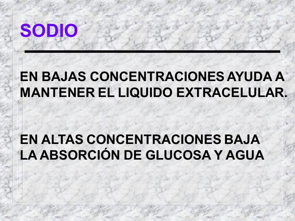SODIO EN BAJAS CONCENTRACIONES AYUDA A MANTENER EL LIQUIDO EXTRACELULAR. EN ALTAS CONCENTRACIONES BAJA LA ABSORCIÓN DE GLUCOSA Y AGUA