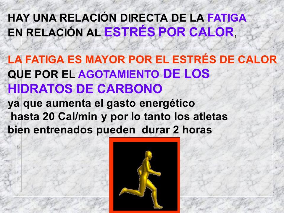 HAY UNA RELACIÓN DIRECTA DE LA FATIGA EN RELACIÓN AL ESTRÉS POR CALOR, LA FATIGA ES MAYOR POR EL ESTRÉS DE CALOR QUE POR EL AGOTAMIENTO DE LOS HIDRATO