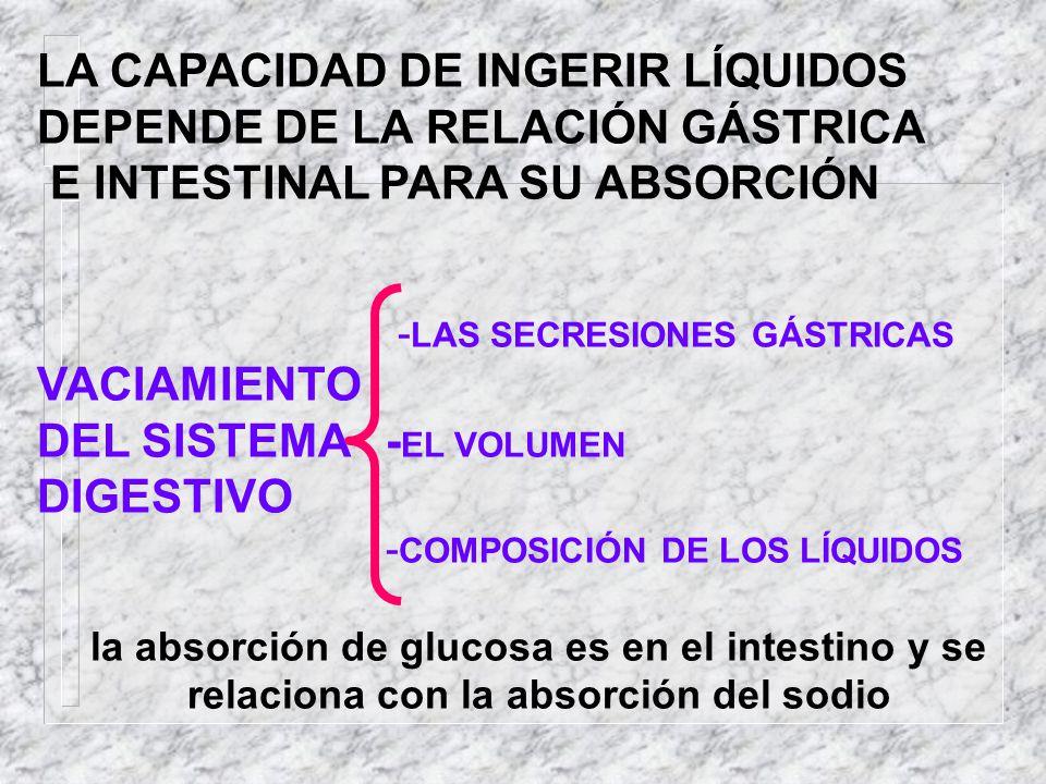 LA CAPACIDAD DE INGERIR LÍQUIDOS DEPENDE DE LA RELACIÓN GÁSTRICA E INTESTINAL PARA SU ABSORCIÓN - LAS SECRESIONES GÁSTRICAS VACIAMIENTO DEL SISTEMA -