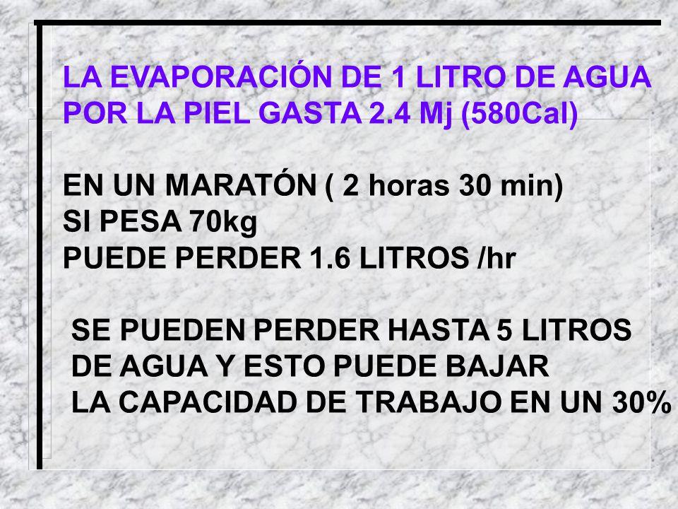 LA EVAPORACIÓN DE 1 LITRO DE AGUA POR LA PIEL GASTA 2.4 Mj (580Cal) EN UN MARATÓN ( 2 horas 30 min) SI PESA 70kg PUEDE PERDER 1.6 LITROS /hr SE PUEDEN