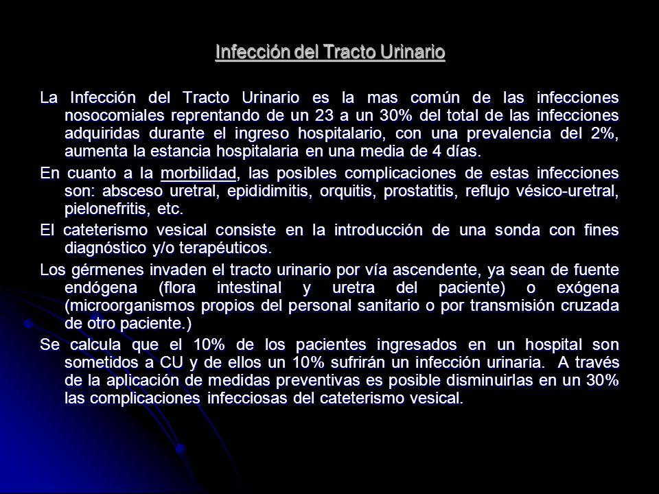 Infección del Tracto Urinario La Infección del Tracto Urinario es la mas común de las infecciones nosocomiales reprentando de un 23 a un 30% del total