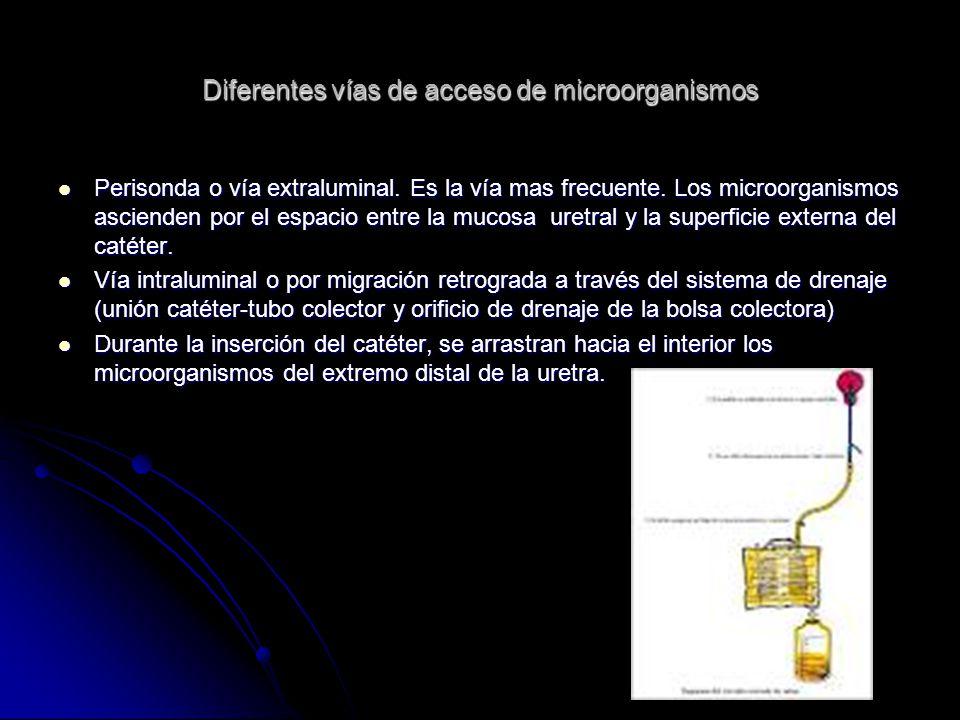 Diferentes vías de acceso de microorganismos Perisonda o vía extraluminal. Es la vía mas frecuente. Los microorganismos ascienden por el espacio entre