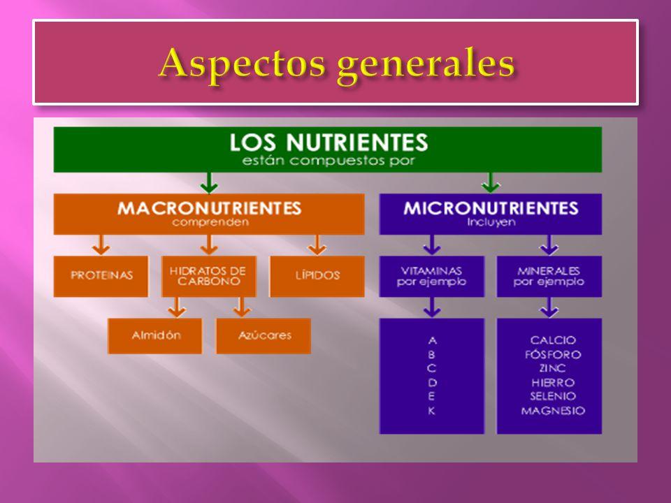 Representa la cantidad máxima de un nutriente, que puede ser ingerido diariamente por la población en general, sin riesgo evidente para la salud.