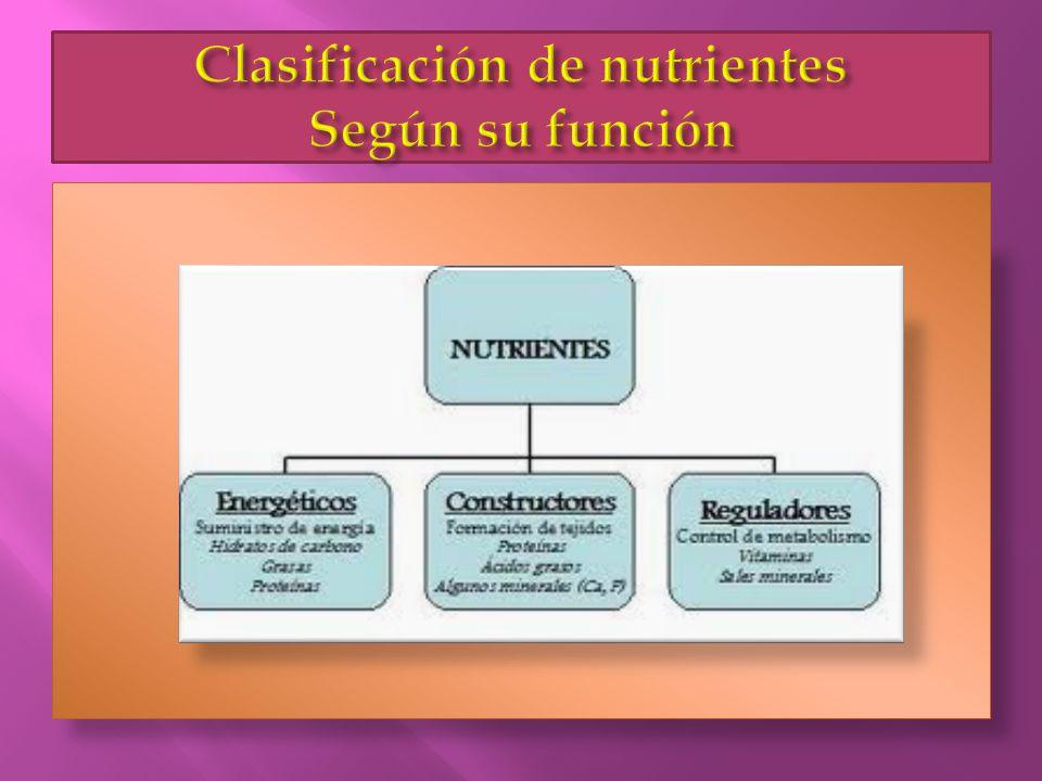  Para que la dieta sea correcta y nutricionalmente equilibrada, tienen que estar presentes en ella la energía y todos los nutrientes, en las cantidades adecuadas y suficientes para cubrir las necesidades del hombre y conseguir un buen estado de salud.