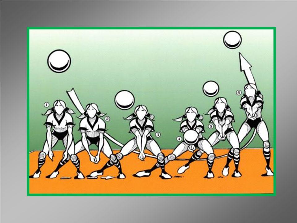 ACCIÓN PROPIAMENTE DICHA El contacto físico con la pelota se realiza a través de los antebrazos pero la acción comienza con la extensión de las piernas antes que la misma llegue a ser golpeada y finaliza con la extensivo total de las mismas y el acompañamiento del cuerpo enviando el balón hacia arriba y adelante.