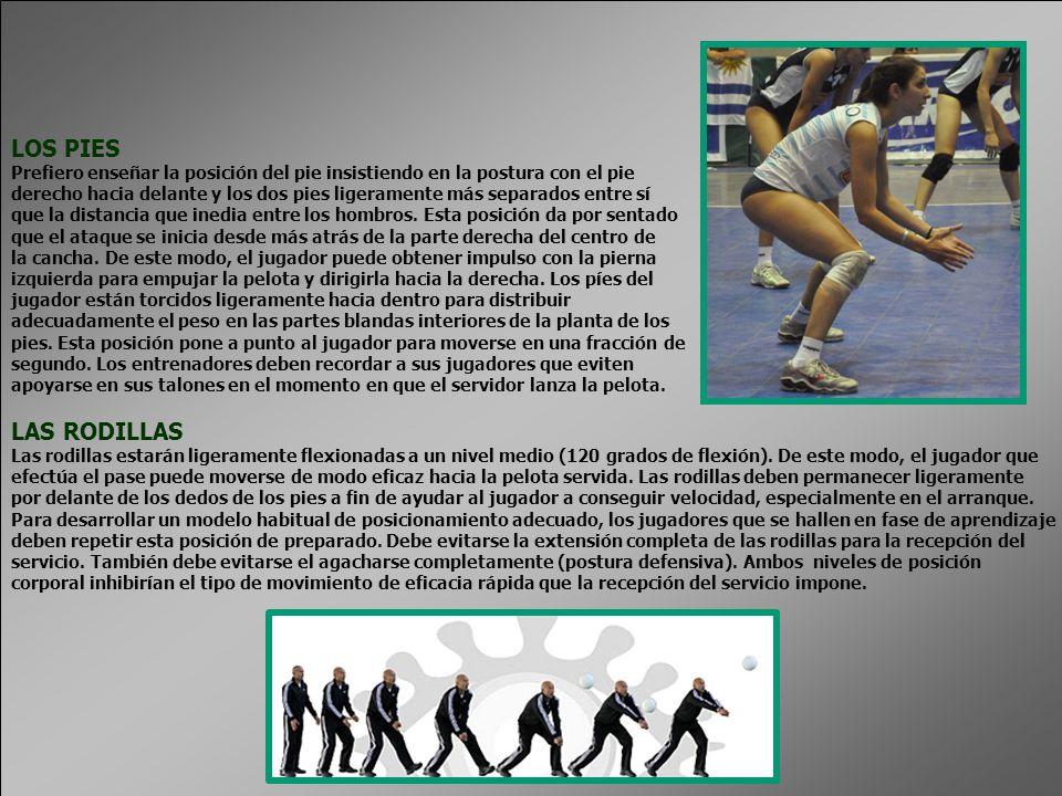 LOS PIES Prefiero enseñar la posición del pie insistiendo en la postura con el pie derecho hacia delante y los dos pies ligeramente más separados entre sí que la distancia que inedia entre los hombros.