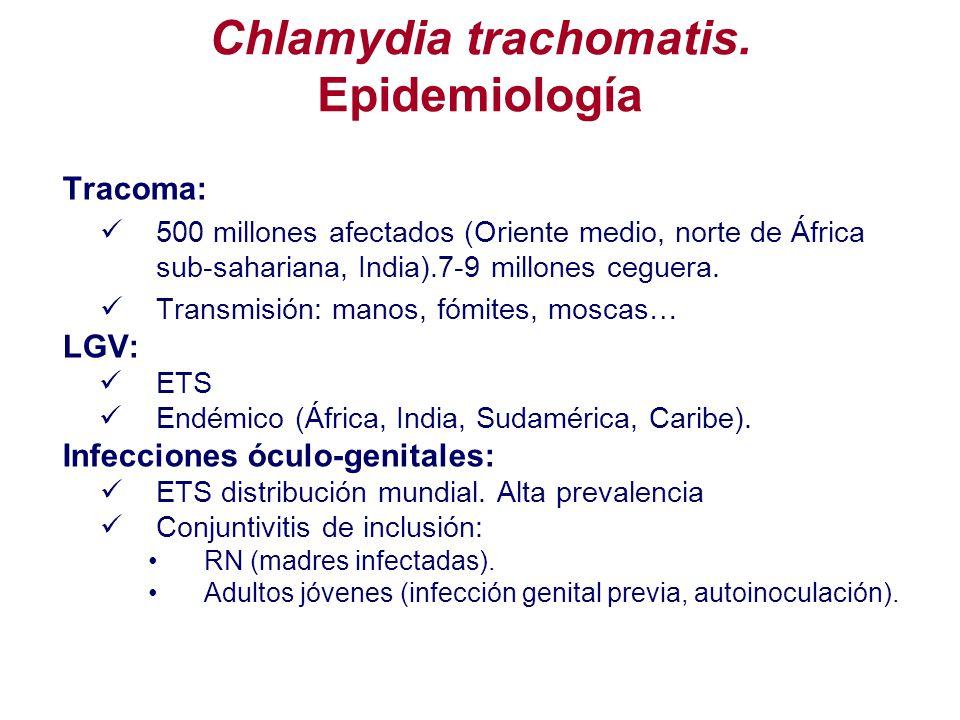 Tracoma: 500 millones afectados (Oriente medio, norte de África sub-sahariana, India).7-9 millones ceguera. Transmisión: manos, fómites, moscas… LGV: