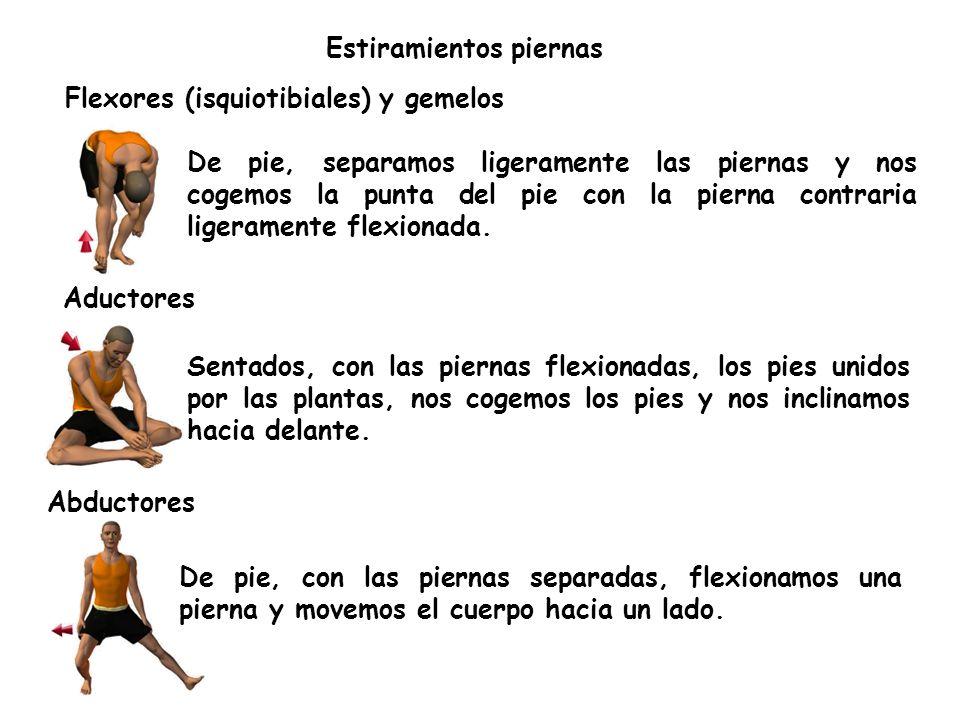 Flexores (isquiotibiales) y gemelos Estiramientos piernas De pie, separamos ligeramente las piernas y nos cogemos la punta del pie con la pierna contraria ligeramente flexionada.