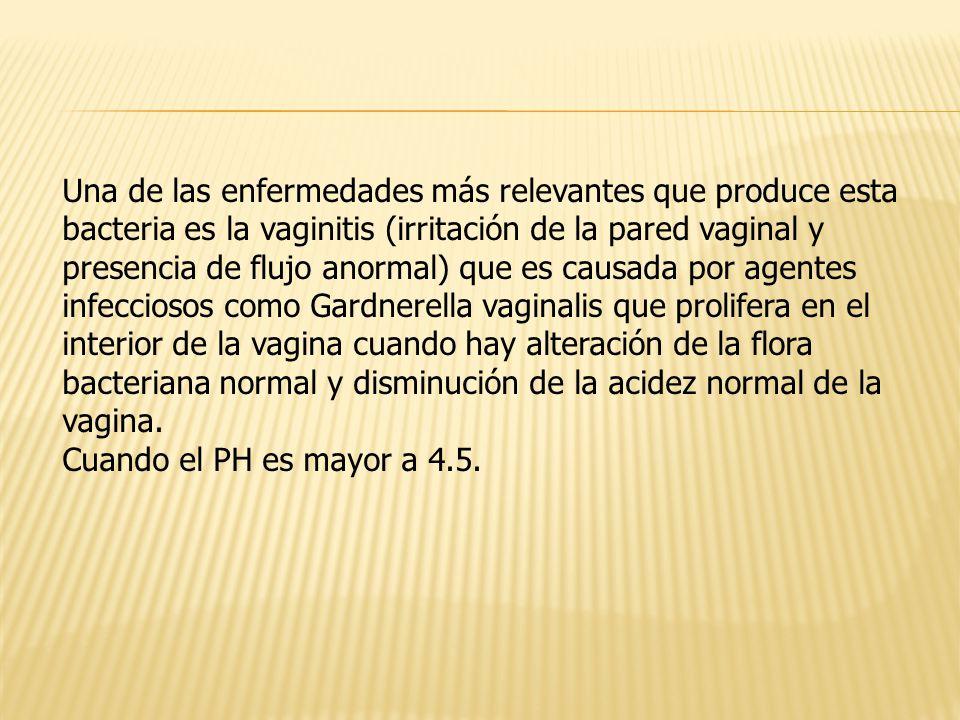 Una de las enfermedades más relevantes que produce esta bacteria es la vaginitis (irritación de la pared vaginal y presencia de flujo anormal) que es causada por agentes infecciosos como Gardnerella vaginalis que prolifera en el interior de la vagina cuando hay alteración de la flora bacteriana normal y disminución de la acidez normal de la vagina.