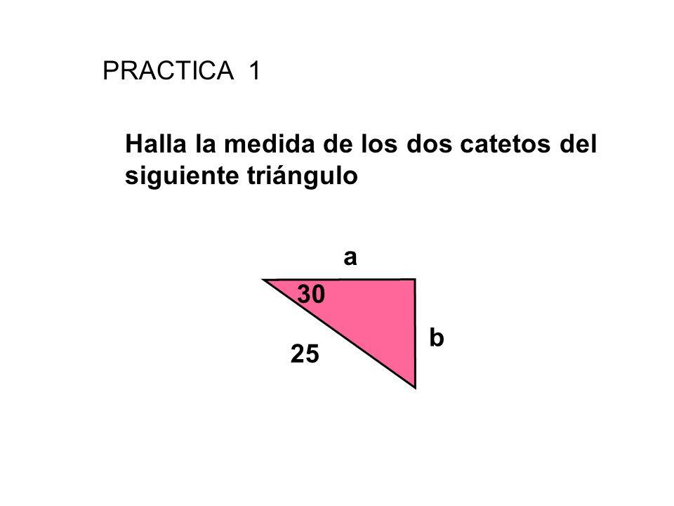PRACTICA 1 Halla la medida de los dos catetos del siguiente triángulo 30 25 b a
