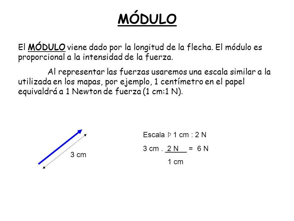 MÓDULO El MÓDULO viene dado por la longitud de la flecha. El módulo es proporcional a la intensidad de la fuerza. Al representar las fuerzas usaremos